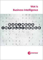 wat is business intelligence